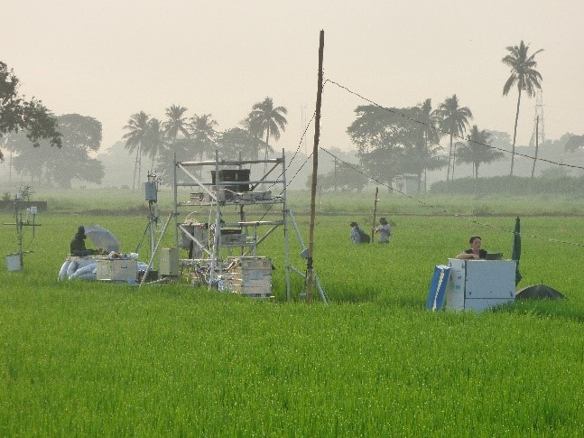 Nitrogen flux testing over rice fields in Odisha, India
